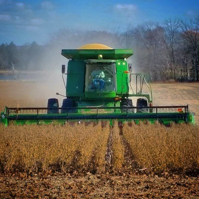 Wisconsin Harvest