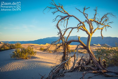 Morning at Mesquite Flat Sand Dunes