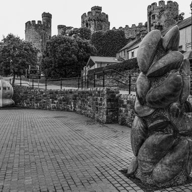 Conwy has a rich fishing history associated still with mussel fishing locally. This sculpture on the Quayside celebrates that heritage, overlooked by the castle.