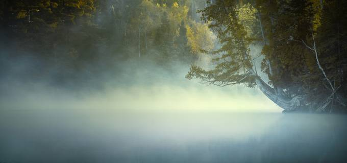 The Mists of Hunt Lake by stuartdeacon - Mist And Drizzle Photo Contest