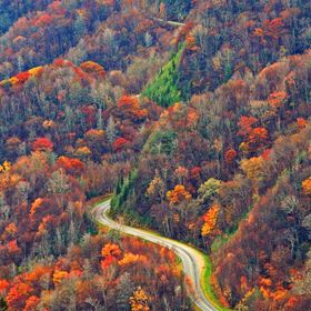 Curvy road in the Great Smoky Mountains in Autumn.