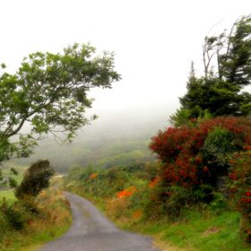 The Irish mist rolls in from the sea on a summer's day [ a tribute to my first tiny Nikon camera, the least expensive at that time, of the C...