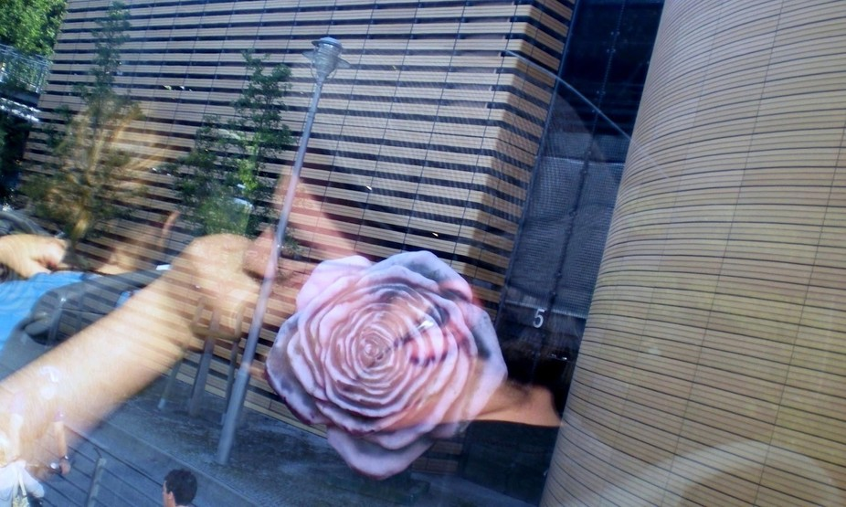 This guy's #reflection on the #window of the Public Bus Line 100 in #Berlin bounded perf...