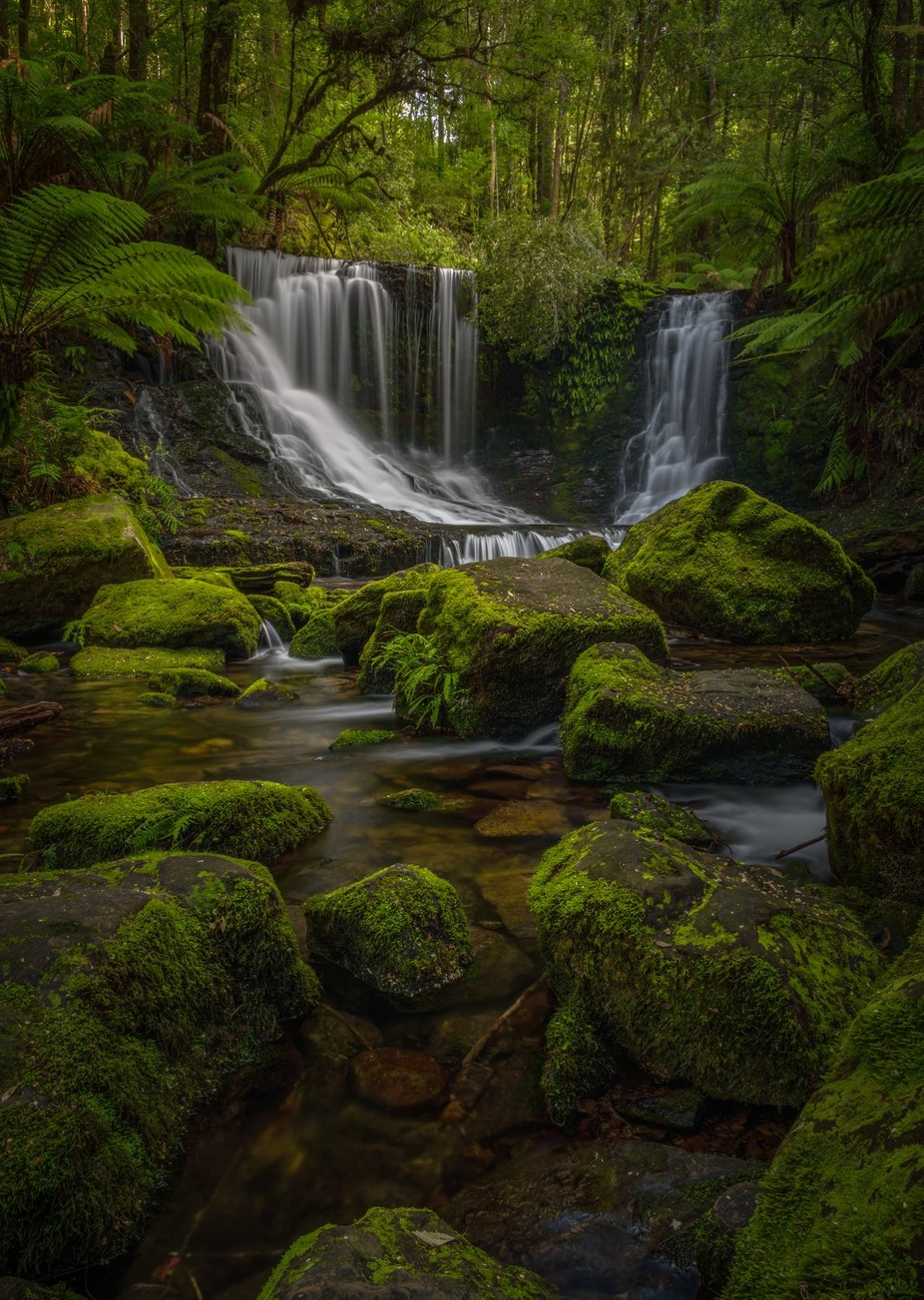 Falls & Ferns by jamierichey - Zen Photo Contest