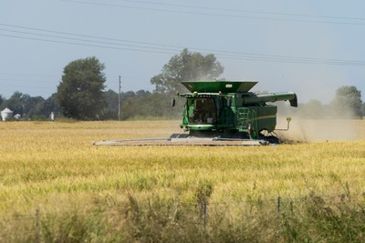 Green harvester in reaping a crop in a golden farm field