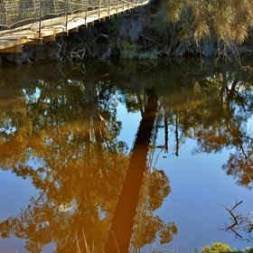 beautiful reflections of the swinging bridge at York in the WA Wheatbelt