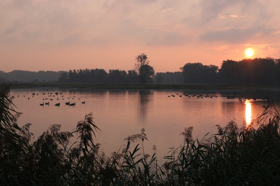 Sunrise at the Bourgoyen Nature Reserve