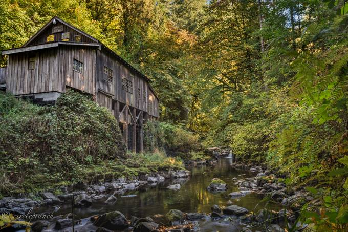 Griss Mill Woodland Wa by circlepranch - HDR Landscapes Photo Contest