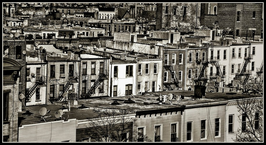 Brooklyn from Above