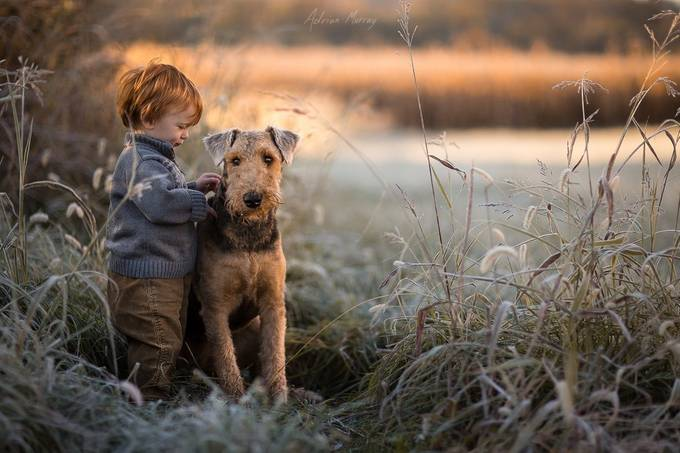 Morning Walk by adrianmurray - Children and Animals Photo Contest