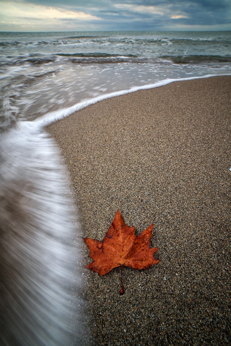 Autum on the beach by elenapardini - Fall 2017 Photo Contest