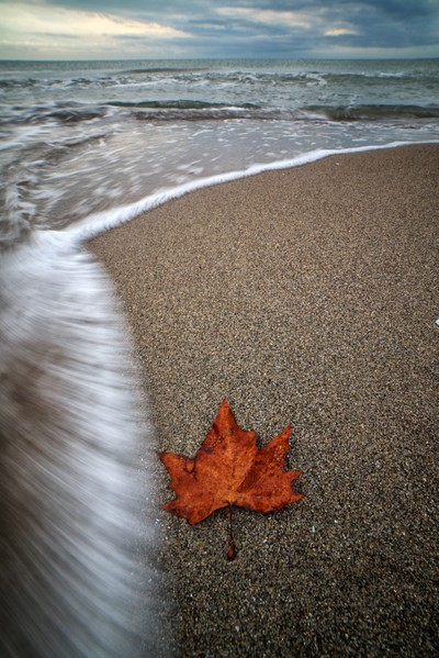 Autum on the beach