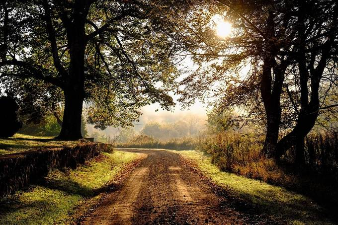 Lovely old country road by rmr731 - Country Roads Photo Contest