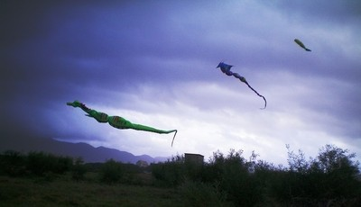 dragons flying into the storm...