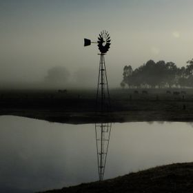 A lone windmill on a misty morning on a farm next to Taunton Park in Western Australia.