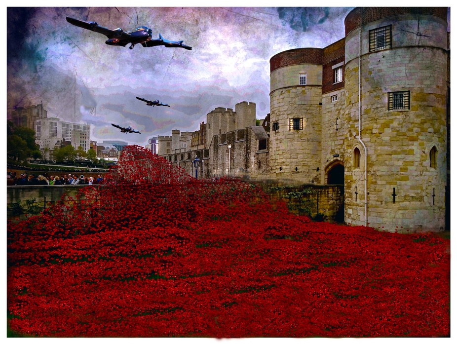 tower of London poppies with a fly past of planes in remembrance of those who lost there lives in...
