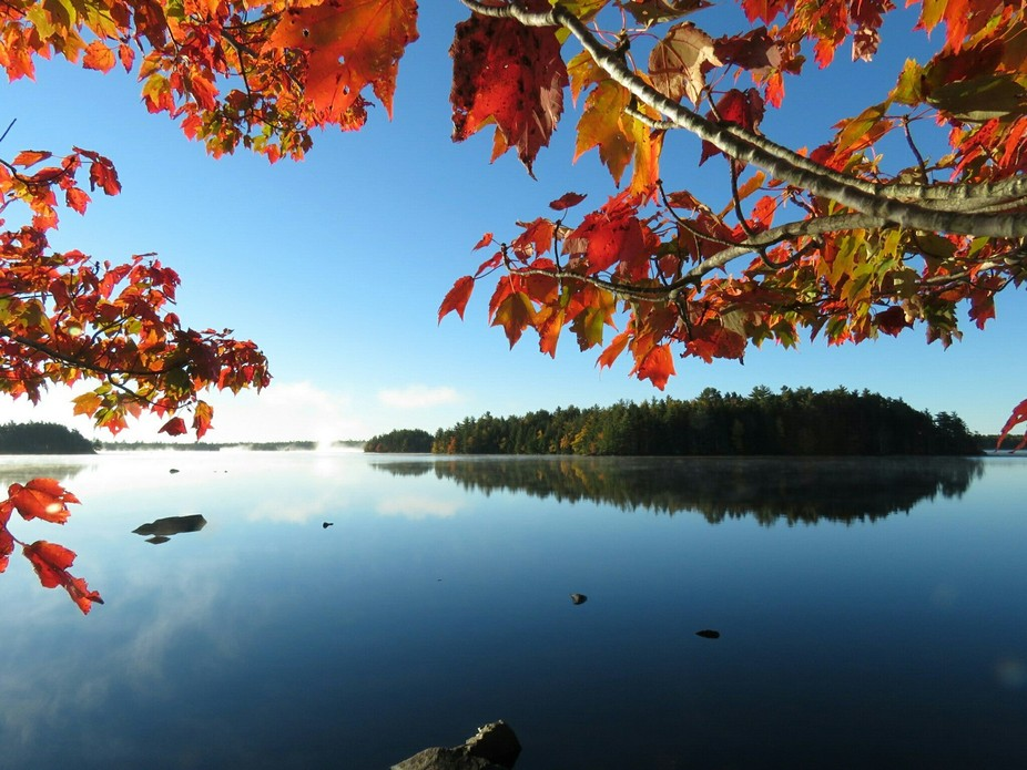 Peeking through the maple trees at the colorful reflections on a magnificent fall morning.