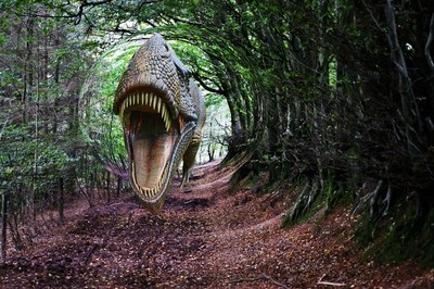 Dino in the woods