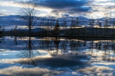 Reflection on a Blue Pond