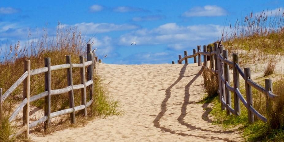 Trail to ... Sandbridge, Virginia Beach