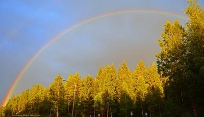 Dome of rainbow after heavy rain