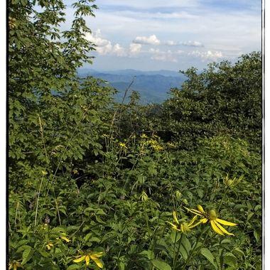 Mount Mitchell I