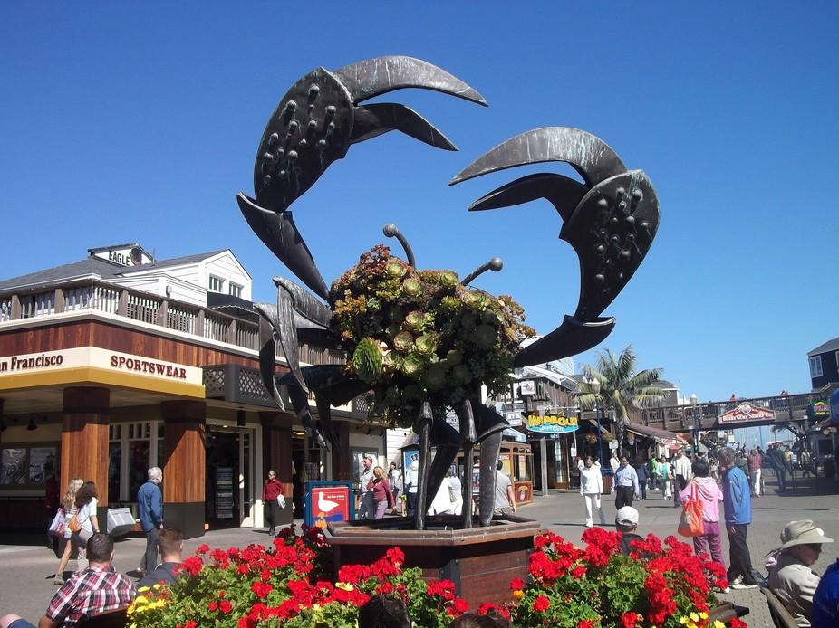 Giant crab!