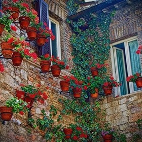 Flowers and pots on an Italian home