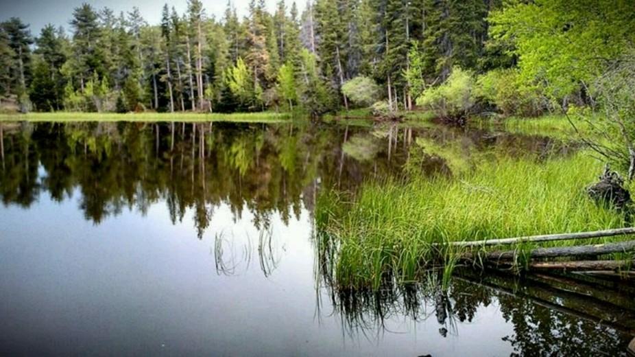 Mudd Lake near Nederland, Colorado