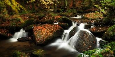 Cascade-waterfall - Auvergne - France