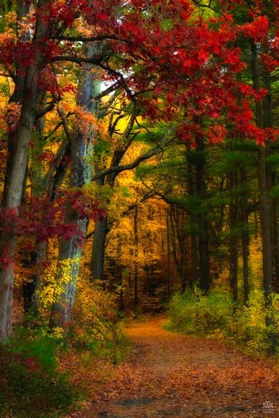 Southern New England Autumn door Theo-Herbots-Fotograaf