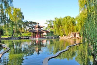 Shanghai  Tranquility