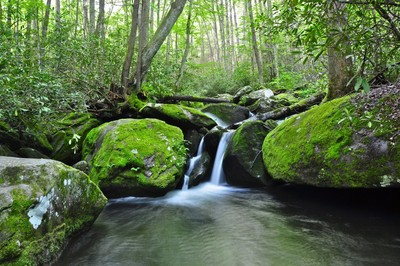 Jakes Creek Falls.