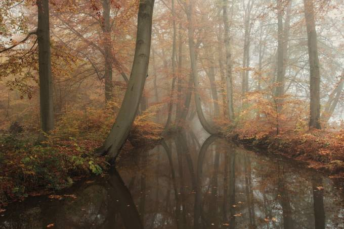 Autumn Waterline by vincentcroce - Fall 2016 Photo Contest