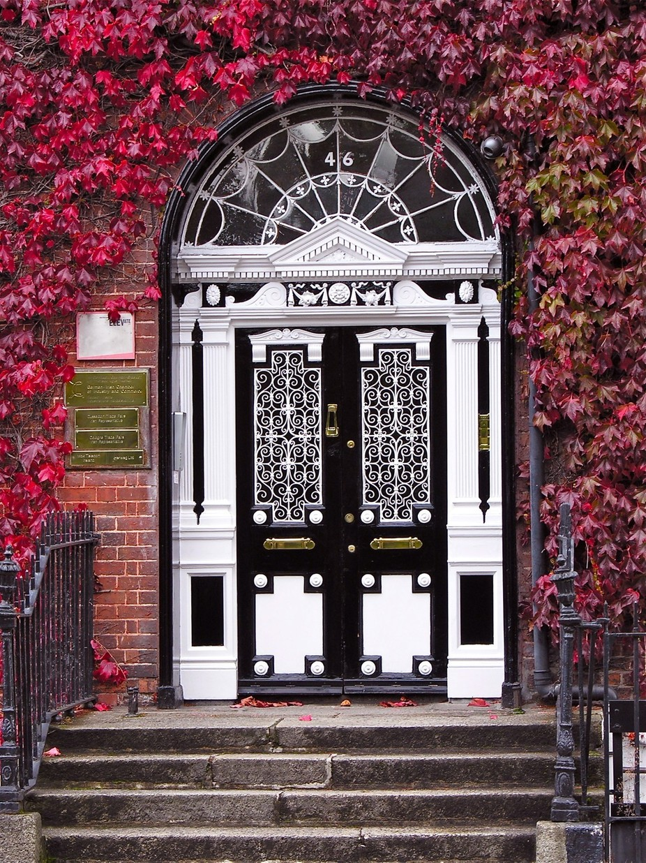 A doorway in Dublin Ireland surrounded by red ivy.