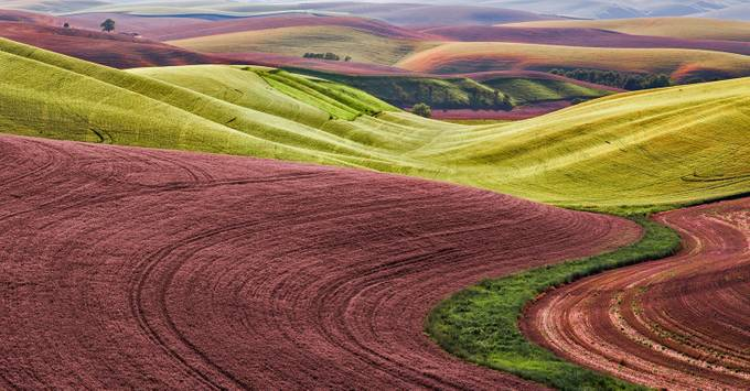 Palouse Fields by clfowler - Composing with Curves Photo Contest
