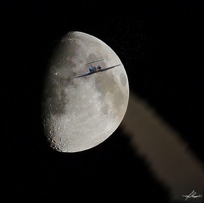 To The Moon Alice