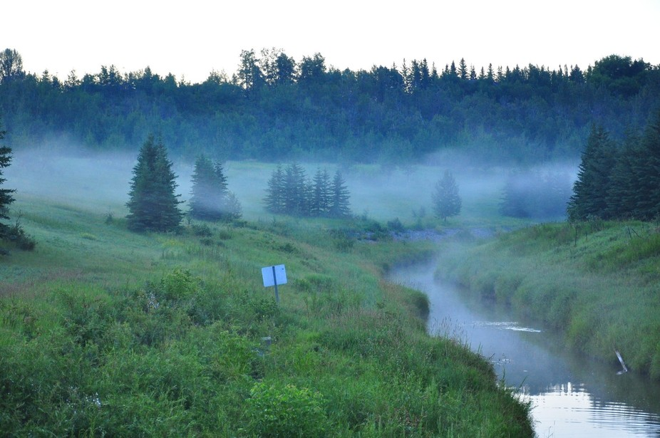 A misty morning overlooking the ravine.
