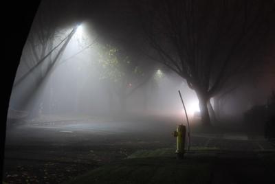 city in fog 2015 nov