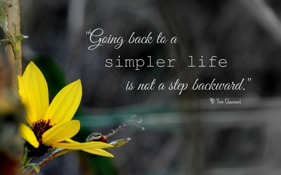 """""""Going back to a simpler life is not a step backwards.""""  ~ Yvon Chouinard"""