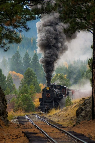Sumpter Vally Train