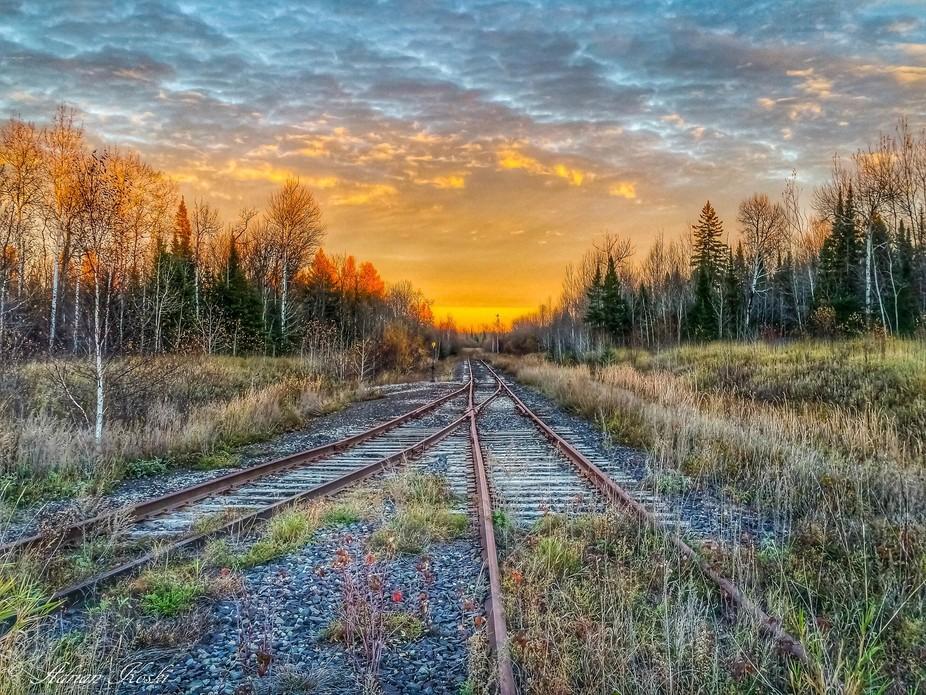 Sunny Tracks