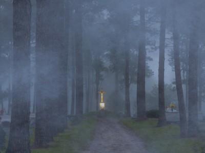 Foggy Hallowed Ground