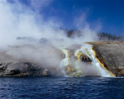Buffalo, Yellowstone National Park_WY