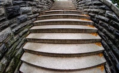 Central Park Belvedere Steps Fisheye