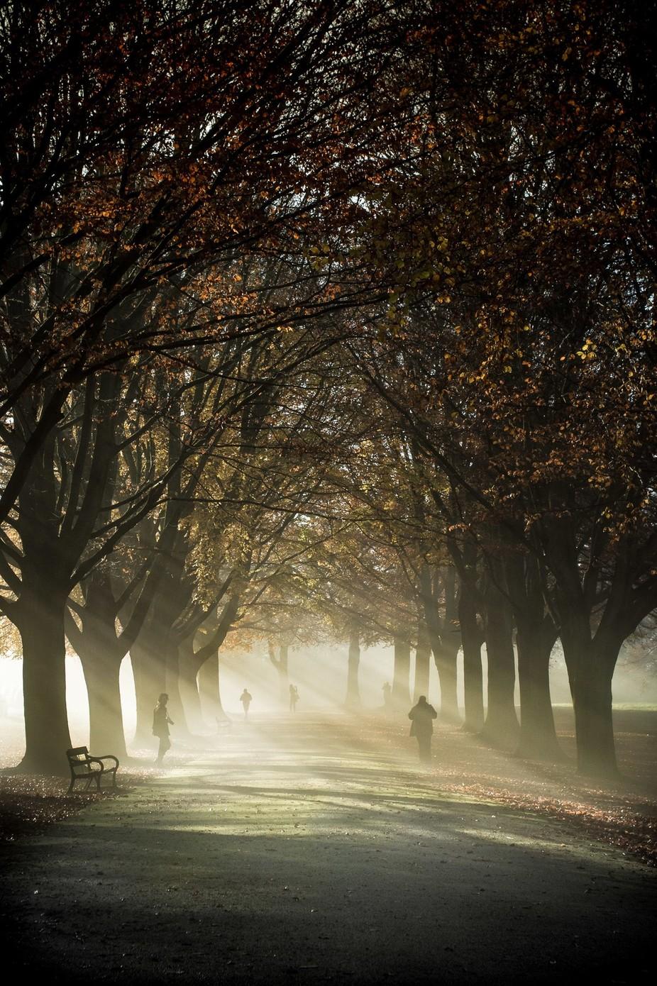 Fog walkers  by joshuaperrett - Take A Stroll Photo Contest