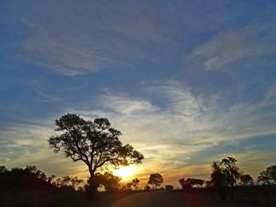 Sunset in the Kruger National Park (1)