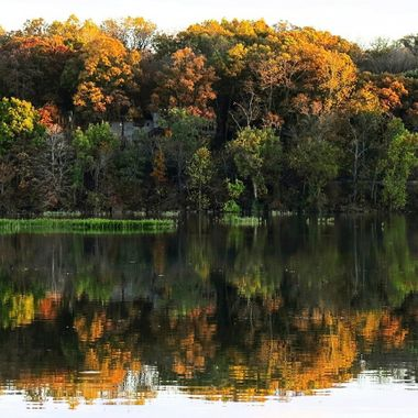 Springfield Lake Fall Reflections 2