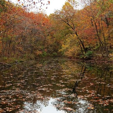 Ha Ha Tonka Autumn Reflection