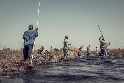 Transportation in the Okavango Delta